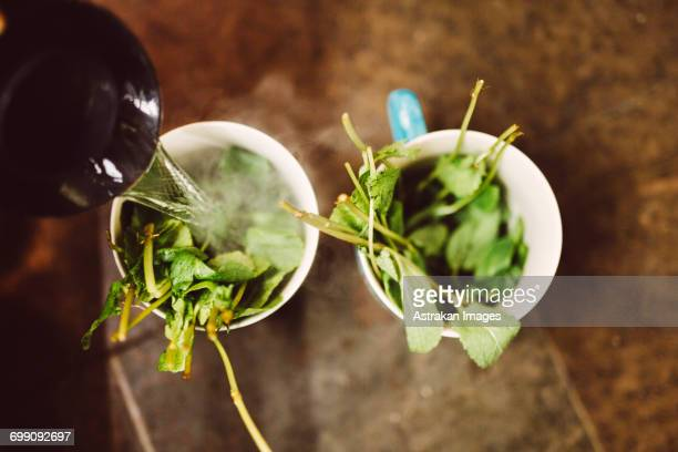 Sweden, Stockholm, Gamla Stan, Boiling water being poured into cups with leaves