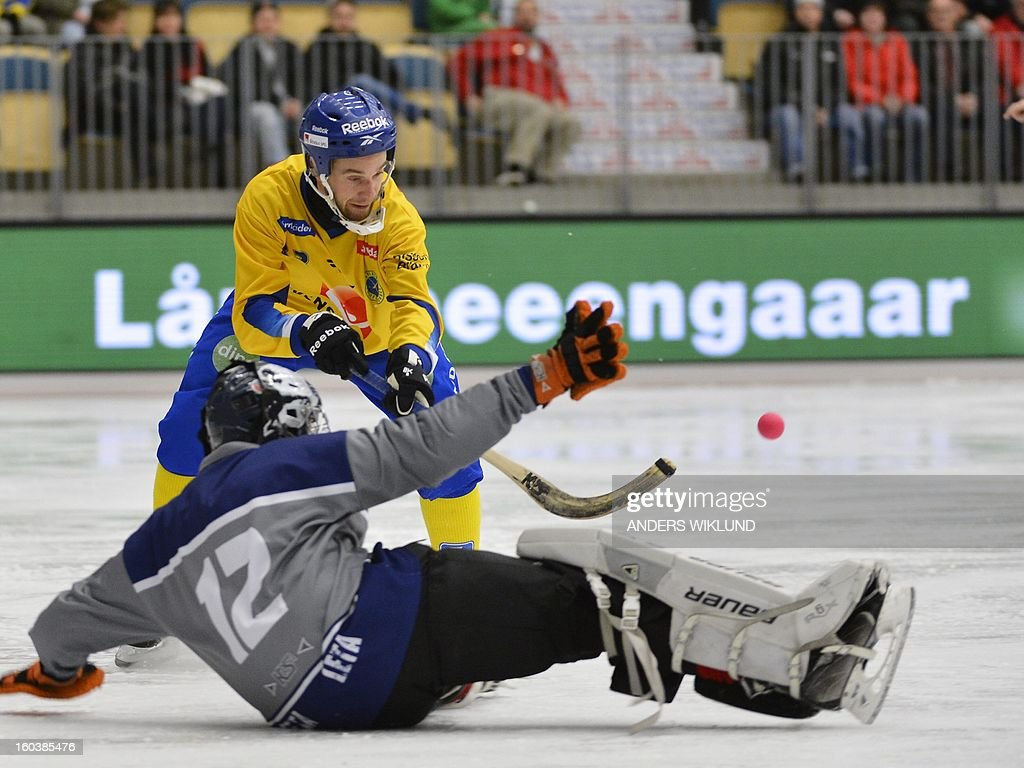 Sweden's Daniel Andersson (top) lifts the ball during the Bandy World Championship match between Sweden and Norway in Vanersborg, Sweden, on January 30, 2013.