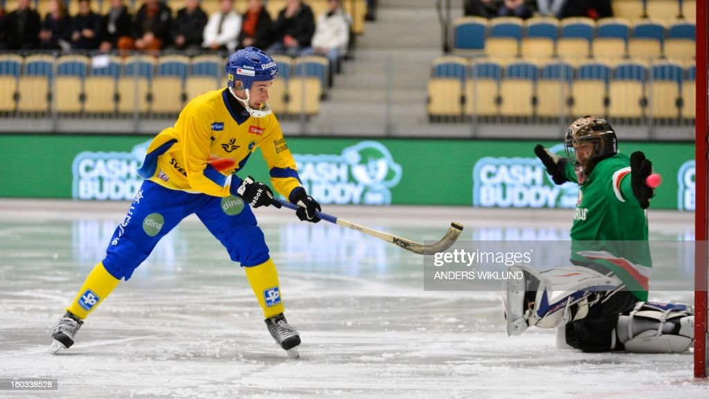 Sweden's Daniel Andersson scores the opening goal behind Belarus goalkeeper Dmitry Sergeev during the Bandy World Championship match between Sweden and Belarus in Vanersborg, Sweden, on January 29, 2013.