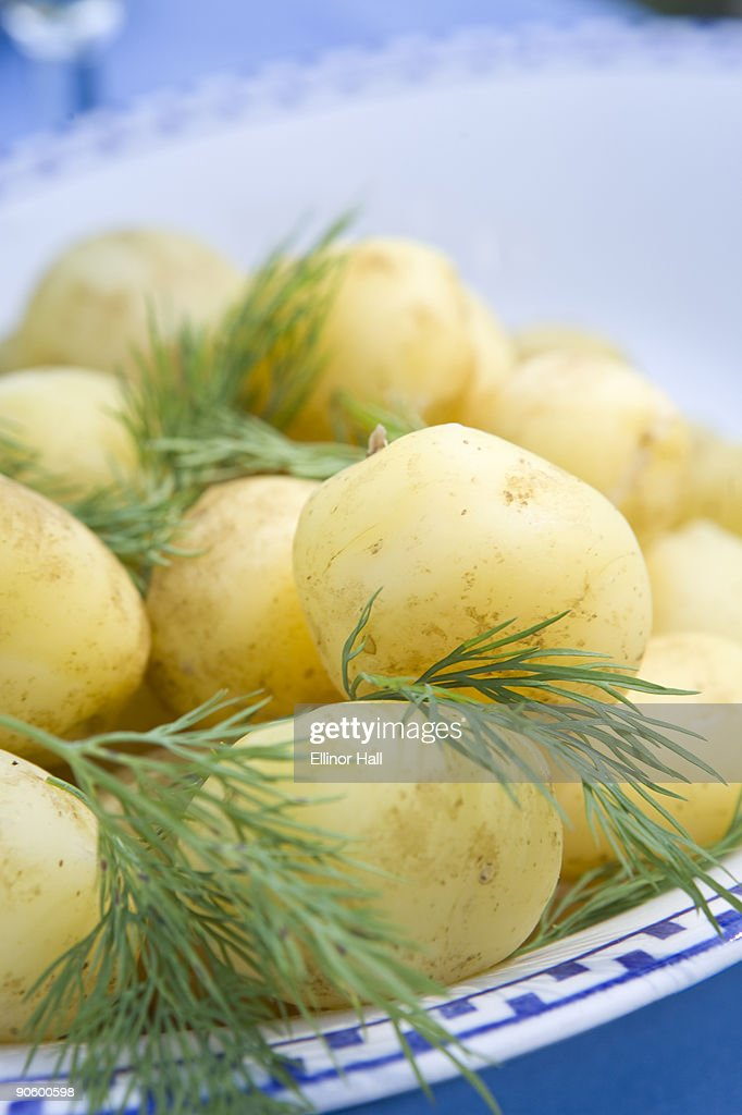 Swedish new potatoes on a plate Sweden.