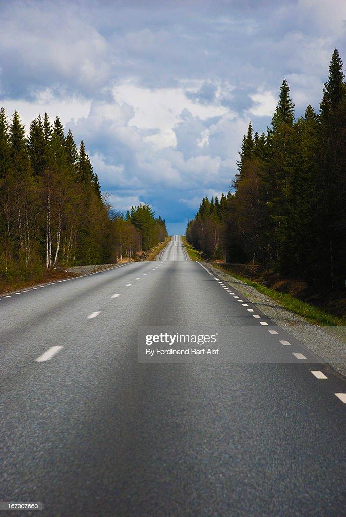 Swedish open road : Stock Photo