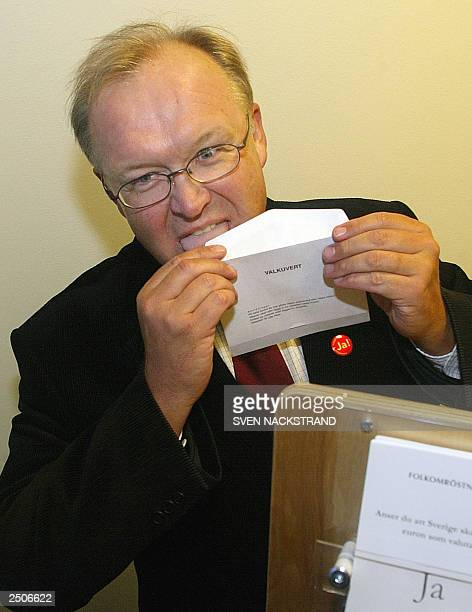Swedish Prime Minister Goeran Persson licks the envelope as he casts his vote for the Swedish Euro participation 09 September 2003 in a post office...