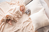 Top view of plump newborn napping on comfortable couch and nursing her finger