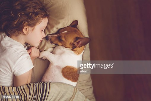Sweet curly girl and jack russell dog is sleeping in night. : Stock Photo