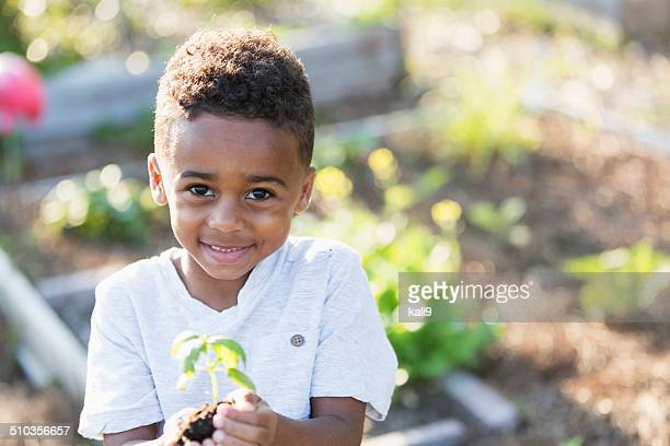Sweet little boy holding seedling
