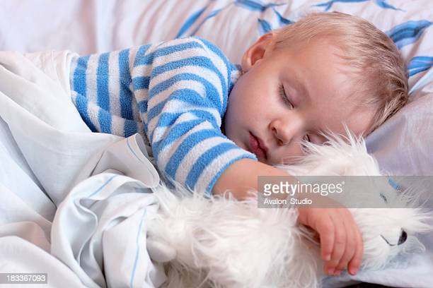 Sweet little boy sleeps with a toy