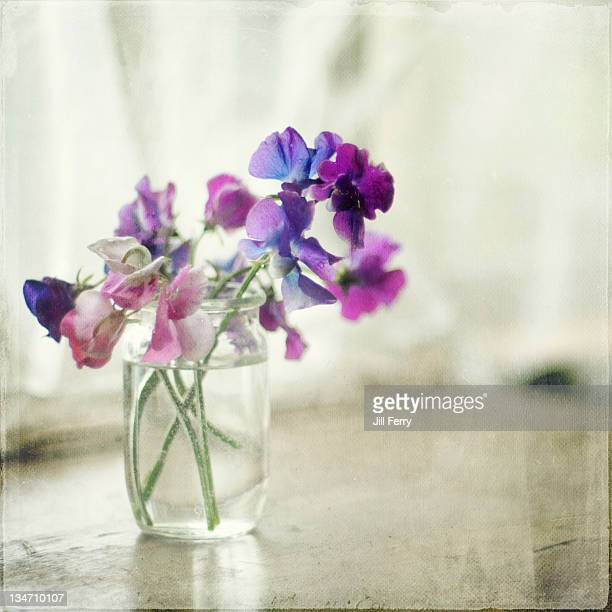Sweet peas in glass jar