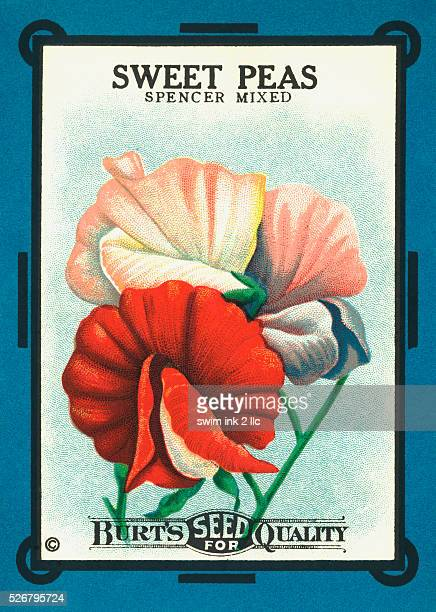 Sweet Peas Spencer Mixed Flower Seeds Package Label