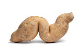Sweet potato in a special shape on white background
