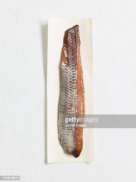 Sweet-pickled herring on paper, studio shot