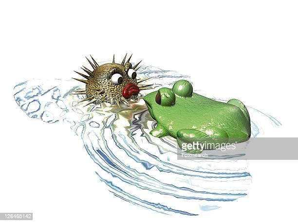 3D, swellfish, cartoon, cute, animal