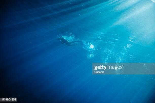 Swiming dans l'océan Indien