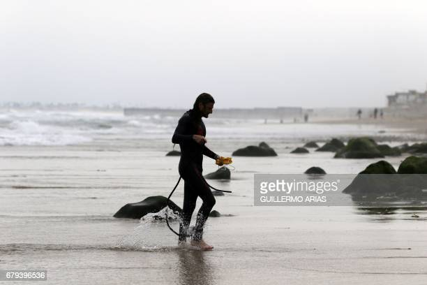 US swimmer Ben Enosh participating in the PanAmerican Colibri Crossing arrives at the beach in Playas de Tijuana Mexico on May 5 after swimming...