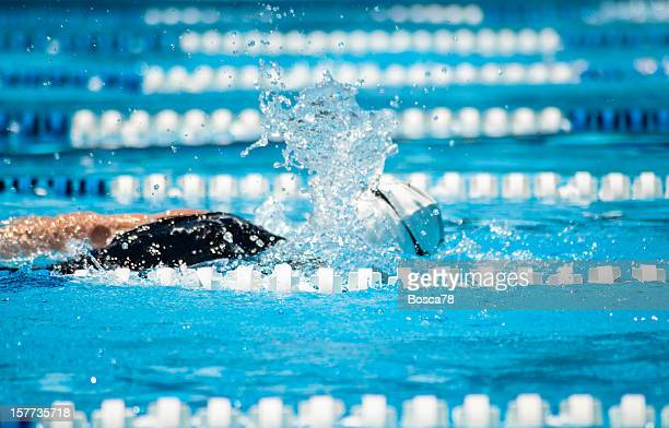 Natation dans une piscine sportive
