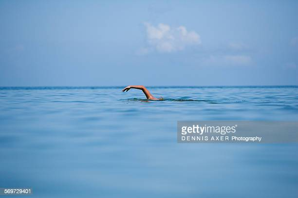 Swimmer in the Gulf of Mexico