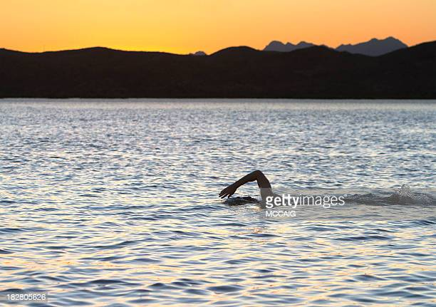 Swimmer in tranquil lake at sunset