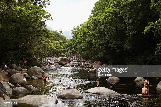 Swimmers are seen in the Mossman river which flows through world heritage listed daintree rainforest on November 13 2012 in Mossman Gorge Australia...