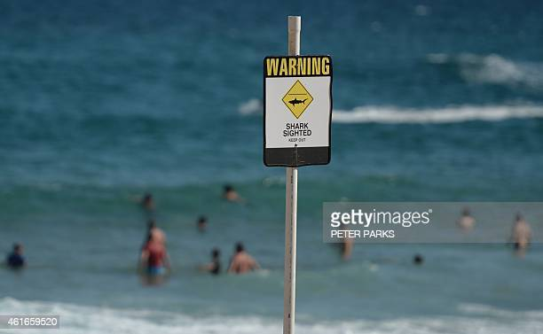 Swimmers are seen in the water despite shark warning signs posted on the beach in the northern New South Wales city of Newcastle on January 17 2015...