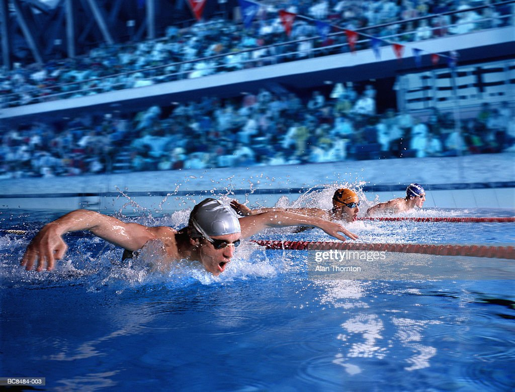 Swimmers doing butterfly stroke in marked race lanes (Composite) : Stock Photo
