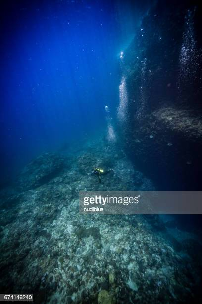 swimming between coral