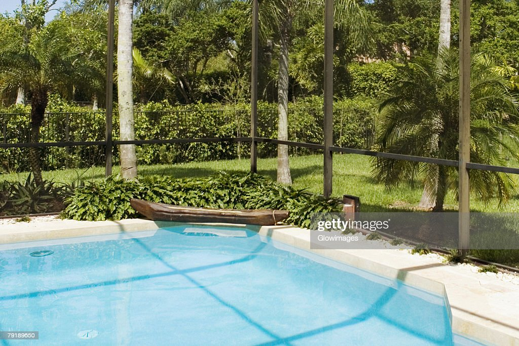 Swimming pool in a garden : Stock Photo