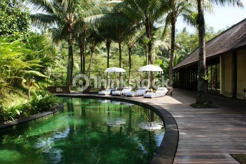 Swimming pool in the jungle stock photo thinkstock for Greenhouse over swimming pool