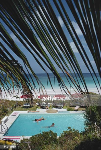 Swimming pool seen through the fronds of a palm tree with two people swimming and a group of people sitting at tables at the poolside in the Bahamas...