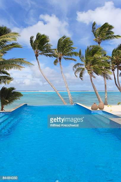 swimming pool with palm trees and lagoon