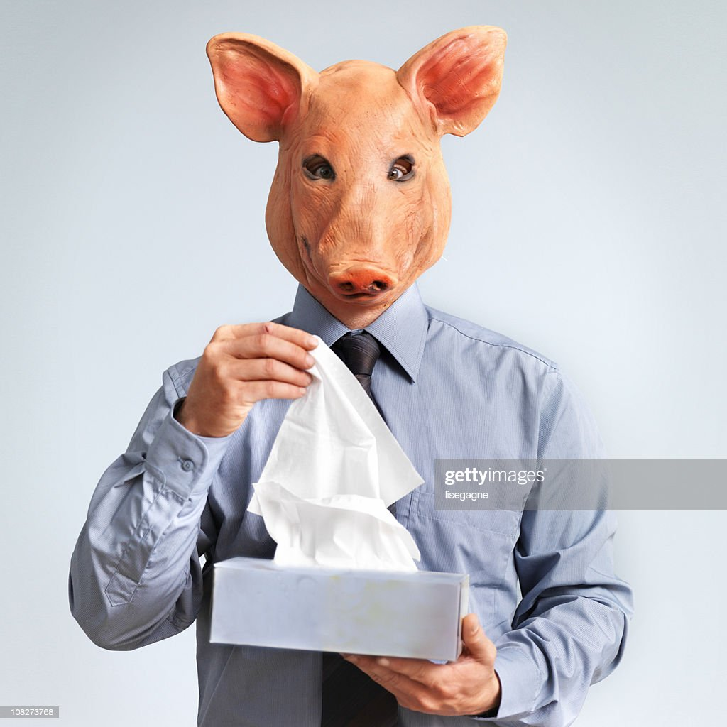 Swine Flu Concept, Man Wearing Mask with Pig Head : Stock Photo