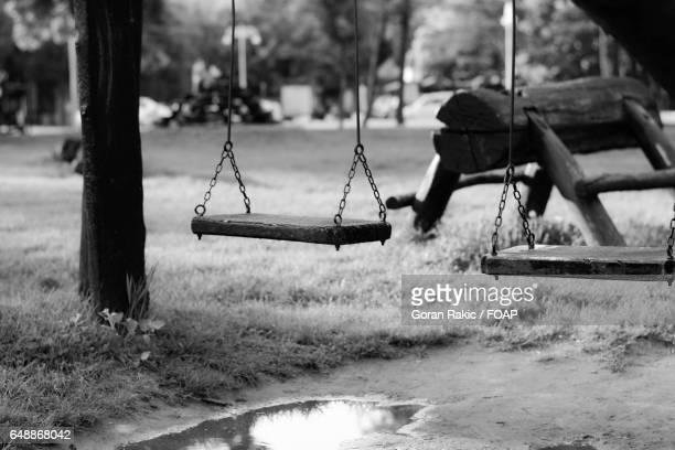 Swing hanging on tree at park