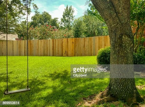 Swing in the Shade : Stock Photo