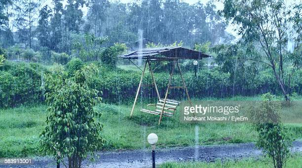 Swing On Grassy Field By Trees At Park During Monsoon