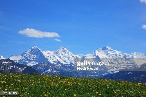 Swiss Alps : Stock Photo