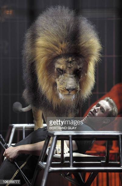 Swiss lion trainer Dominique Gasser performs during the 'Prestige' Bouglione circus show at the Cirque d'Hiver in Paris on October 26 2010 AFP PHOTO...