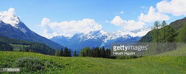 Switzerland, Alps, Spring