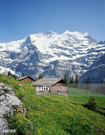 Switzerland, Alps, wooden cabins on mountainside : Stock Photo