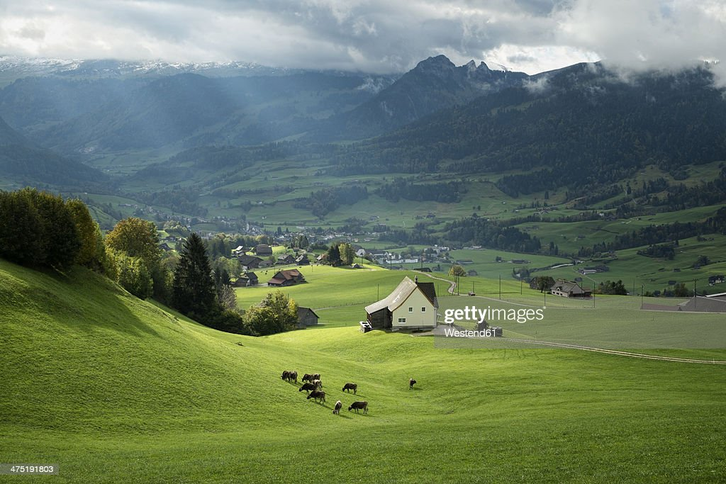 switzerland canton of st gallen swiss alps stock photo getty images. Black Bedroom Furniture Sets. Home Design Ideas