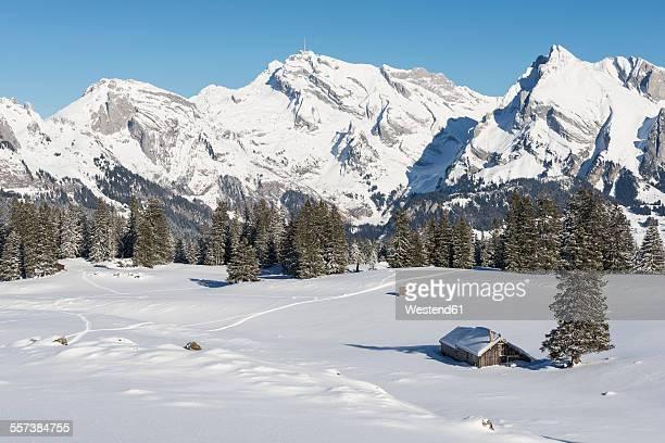 Switzerland, Canton of St. Gallen, Toggenburg, Alt St. Johann, View to Saentis in winter