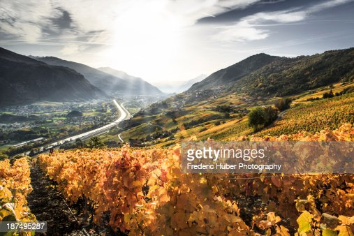 Switzerland (Valais/Wallis): Golden Fall