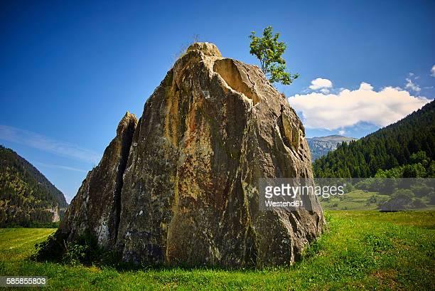 Switzerland, Grisons, Zillis, big boulder and small tree