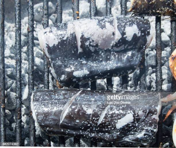 swordfish roasting On Barbeque Grill