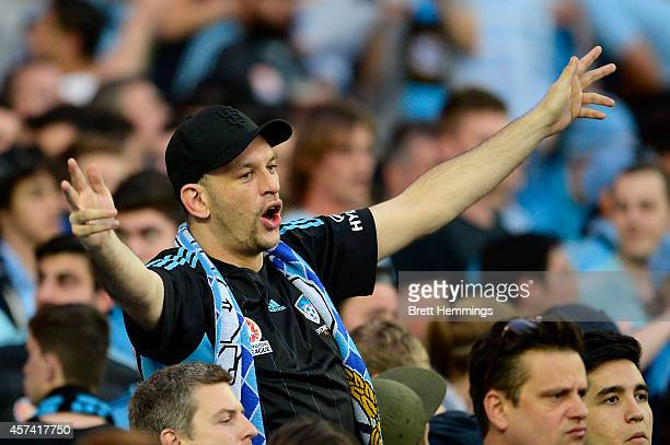Sydney FC fan shows his support during the round two ALeague match between Sydney FC and the Western Sydney Wanderers at Allianz Stadium on October...