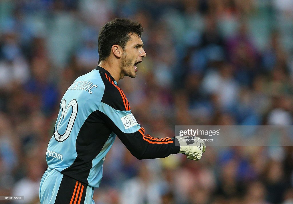 Sydney FC goal keeper Vedran Janjetovic yells at team mates during the round 20 A-League match between Sydney FC and the Brisbane Roar at Allianz Stadium on February 10, 2013 in Sydney, Australia.