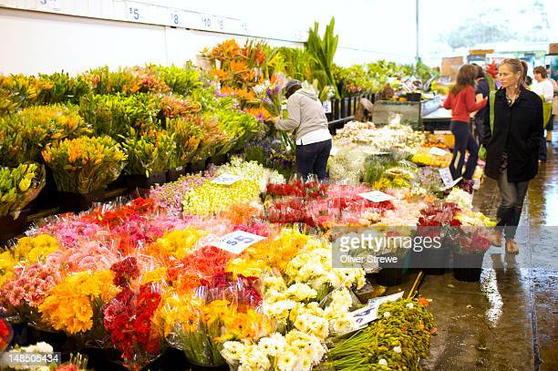 Sydney Flower Market, Parramatta Road, Homebush West.