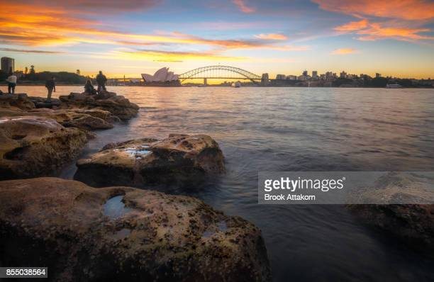 Sydney Sunset from Mrs Macquarie's Chair.