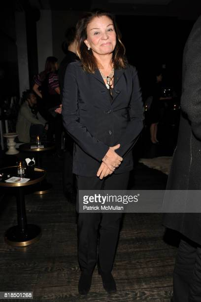 "Sylvia Niarchos attend Chiara Clemente's ""Our City Dreams"" Screening Sponsored by Dior Beauty and Deitch Projects at Film Forum on February 04 2009..."