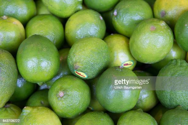 Symbol photo on the topic fruit nutrition health food scandal etc The photo shows limes from Brasil