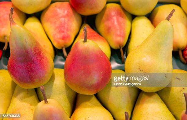 Symbol photo on the topic fruit nutrition health food scandal etc The photo shows SantaMaria pears from Italy