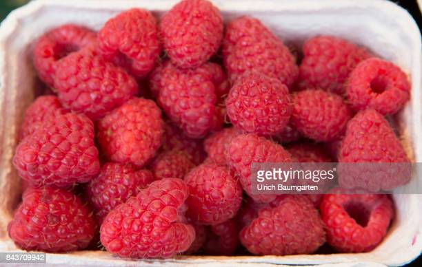 Symbol photo on the topic fruit nutrtion health food scandal etc The photo shows raspberries