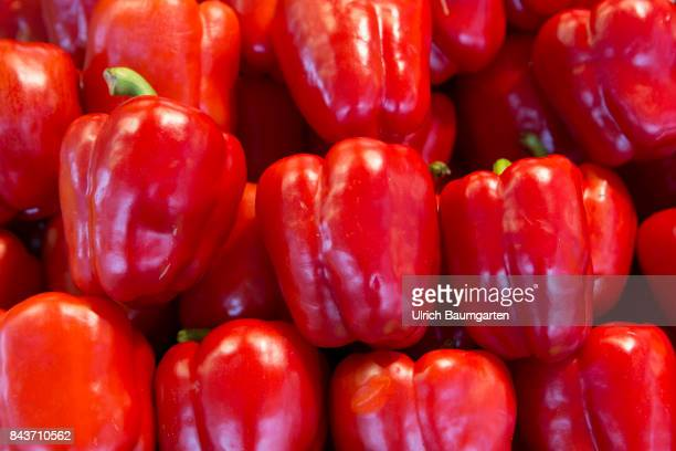 Symbol photo on the topic vegetable nutrition health food scandal etc The photo shows red peppers from Spain